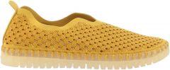 Ilse Jacobsen Tulip  139 818 Golden rod